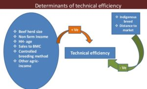 News Update on Technical Efficiency Research: May – 2019