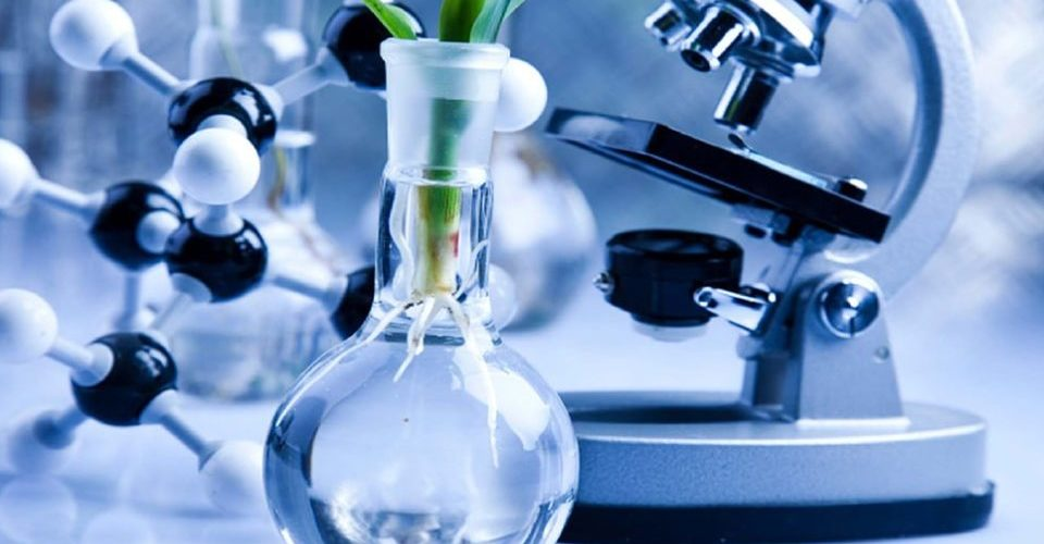 News Update on Biotechnology Research: May – 2019