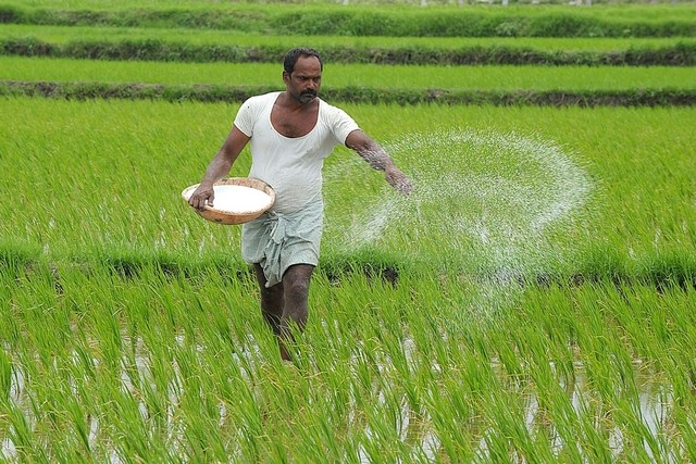 News Update on Crop Insurance Research: May – 2019