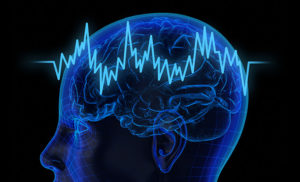 Brain waves may focus attention and keep information flowing