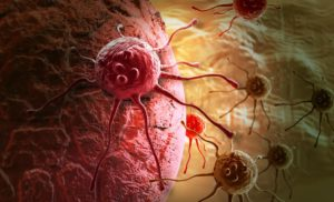 New 'potential target' for cancer therapy found