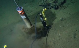 Life and Death in the Deepest Depths of the Seafloor