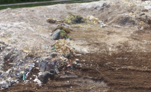 Current Research in Landfills