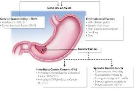 News  Update on Gastric Cancer Research: April – 2019