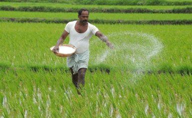 News Update on Crop Insurance Research: June – 2019