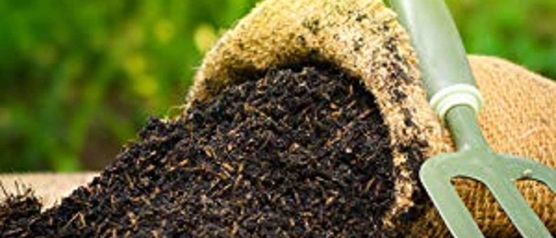 News Update on Organic Fertilizer Research: July – 2019