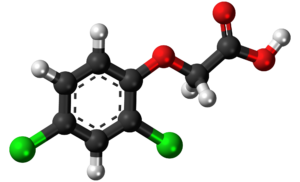 Latest Research News on Dichlorophenoxyacetic Research: Sep – 2019