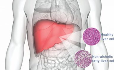Latest News on Liver Disease Research: Nov – 2019