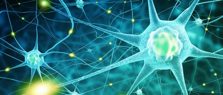 Latest Research News on Parkinson's Disease: Nov – 2019
